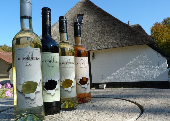 Vakantieboerderij de Holdeurn - wijnen